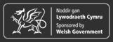 Llywodraeth Cymru / Welsh Government
